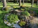 Композиции с отсыпками и природным камнем